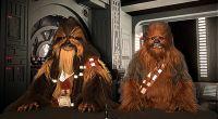 Cientos de fans de Star Wars toman el Zoco de Pozuelo a la llegada de los Wookiee Brothers