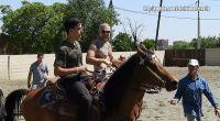 Stunt Horses training day
