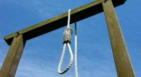 How to Make a Hangman's Noose Knot - DIY a Gallows knot - Nudo corredizo de  horca